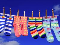 袜子先生:做一双理想主义的袜子