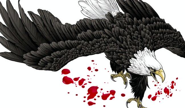 互联网盒子,折翼的老鹰-钛媒体官方网站