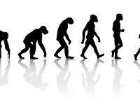 适者生存:企业如何在变革中迅速进化