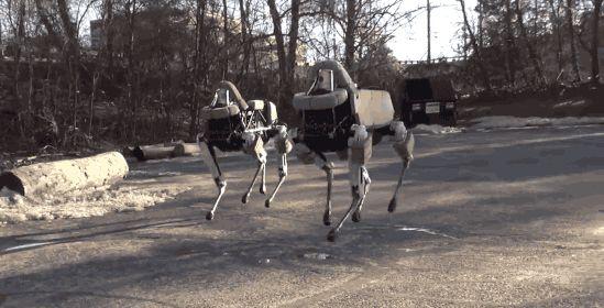 谷歌高冷机器狗:任拳脚相加我自岿然不动-钛媒体官方网站