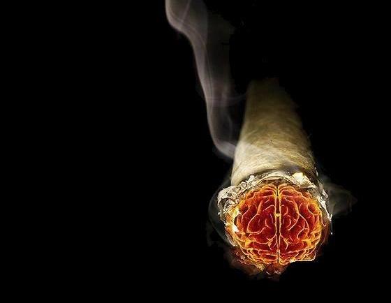 美国政府是如何推动控烟的(下)-钛媒体官方网站