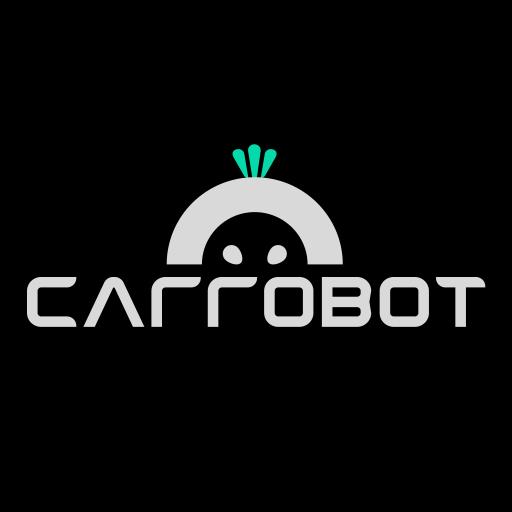 车萝卜智能车载机器人