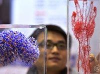 【钛坦白】艾科赛龙赵小文:3D打印技术如何在医疗领域大显身手?