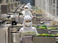 中国制造业浪费为何高居不下?利润率又为何如此惨淡?