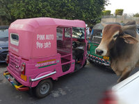 """印度街头现粉红三轮出租 ,让女性远离""""咸猪手""""困扰"""