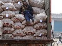 """智能手机普及尚早,""""一代半""""手机成为打开印度农村市场的利器"""