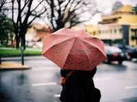 听说南方总下雨,给你推荐几把伞