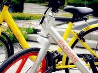 """共享自行车是""""照妖镜,引入个人征信体系能否破局"""