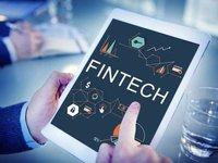 竞相开花的金融科技,何时才能结出丰硕果实