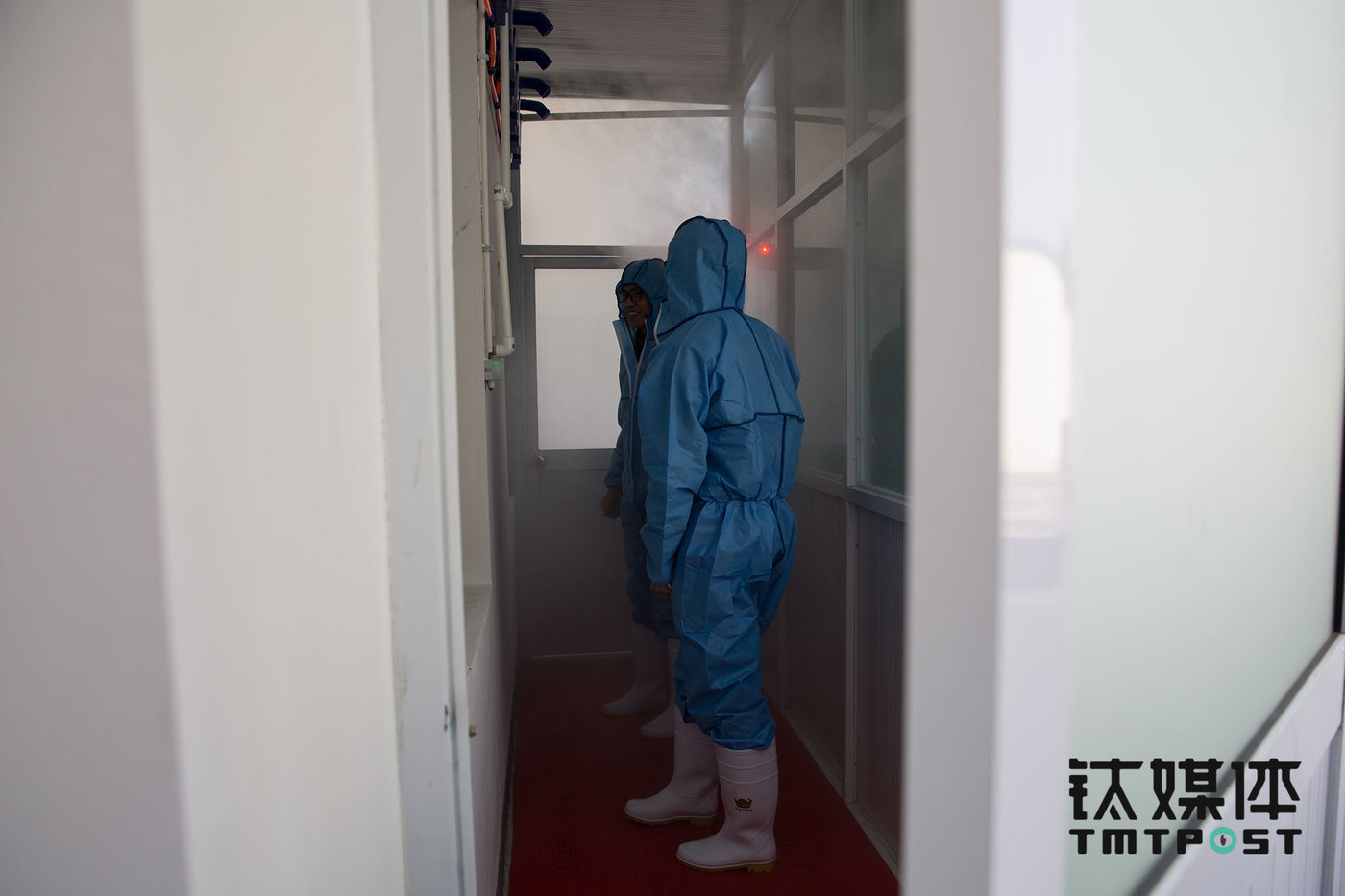 To prevent germs and viruses from entering, visitors would have to put up a protection suit and go through a decontamination hall that adopts ultrasound atomizing sterilization technology before entering the cultivation zone. The decontamination hall has a bathroom on the side. Technicians here at the cultivation zone are required to take a shower before and after work.