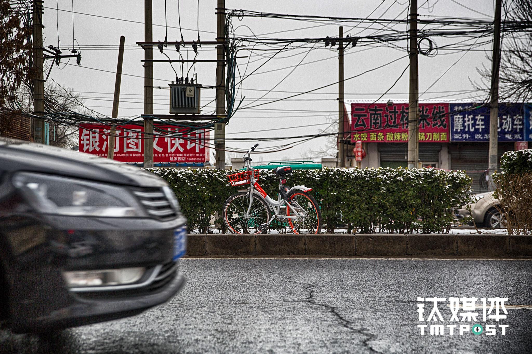 被随意乱停乱放也是共享单车面临的一个考验。2月21日,青年路,一辆摩拜被停放在主路中间的绿化带。