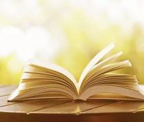 我的世界没你不行,因为你爱读书