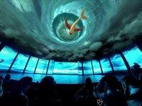 【钛坦白】七维科技李晓波:VR视频的交互性