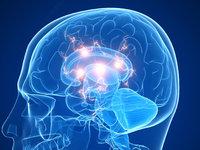 马斯克为对抗AI潜在威胁,开新公司研究脑机交互
