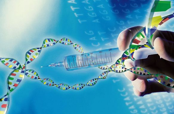 Gene sequencing the first battle of the dust settles, capital crazy behind is beginning to worry