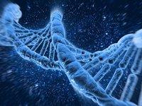 """""""基因界的腾讯""""成功过会,华大基因将正式登陆A股"""