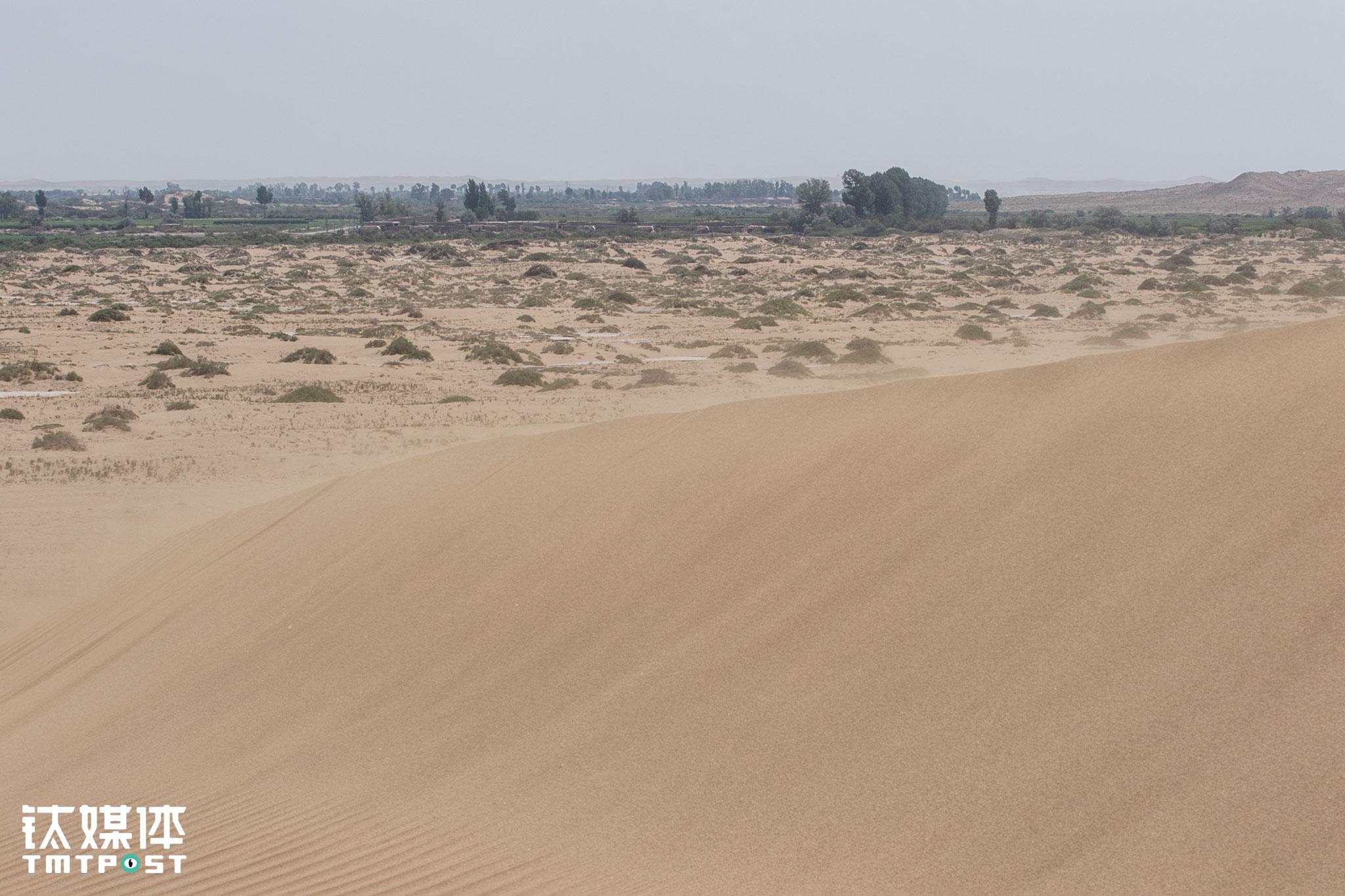 甘肃民勤县礼智村位于腾格里沙漠边缘,这个干旱缺水的西北村庄,有大约一千人口,村里青壮年大都外出打工或举家搬离,留下的大都是50岁以上的人,他们守着这片土地,春种夏收维持生活,支持着在城市求学、置业的年轻人。