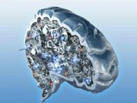 曾经被猛吹的人工大脑,是人工智能走过的弯路吗?