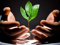 草根创业的黄金时代已经过去,你会成为那个百分之一吗?