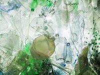 """""""吃""""塑料的虫子被发现,或成白色污染新救兵"""