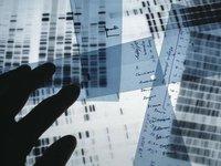 谷歌发布了一款AI工具,可以帮助基因组数据解读