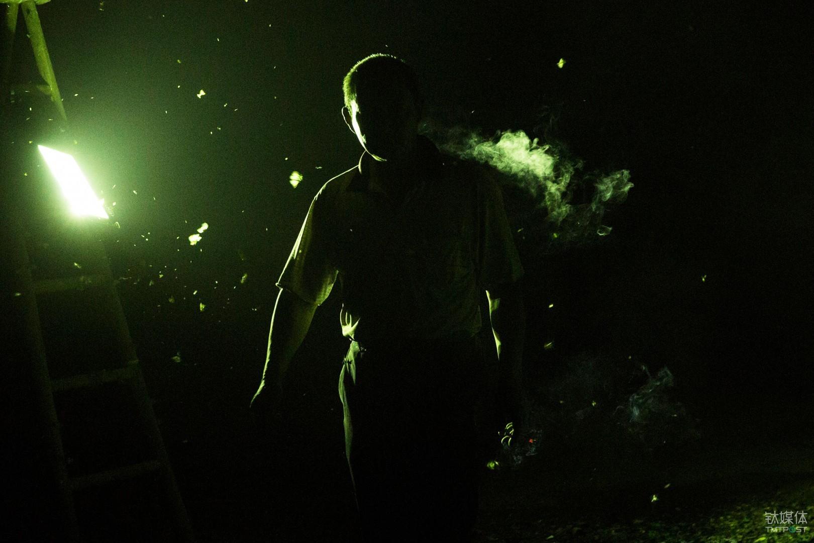 连夜赶工。湖南,工地苗木工人加班加点工作,灯光下聚集着大量飞蛾。
