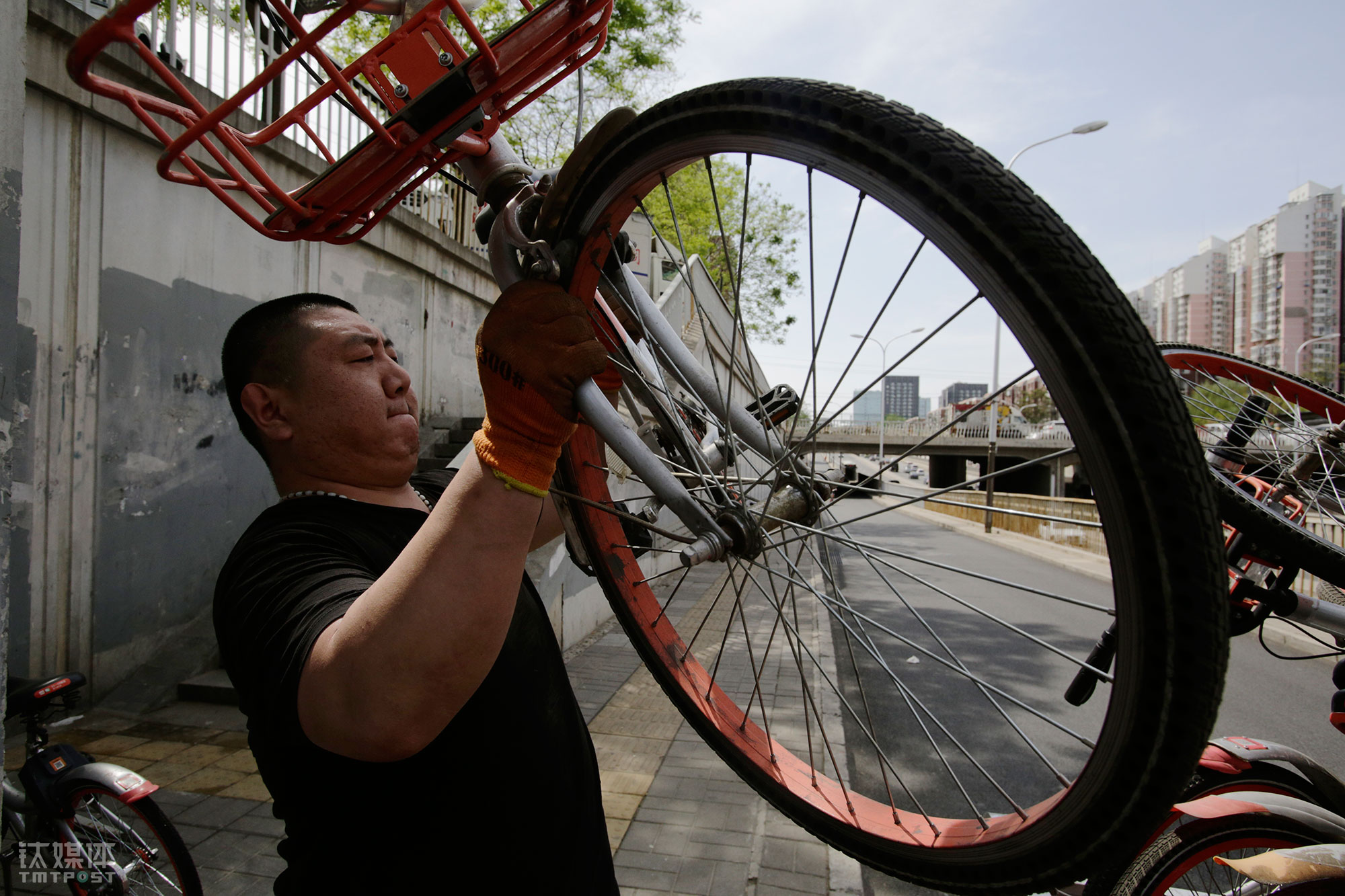 大强搬起一辆摩拜单车,准备装上三轮。