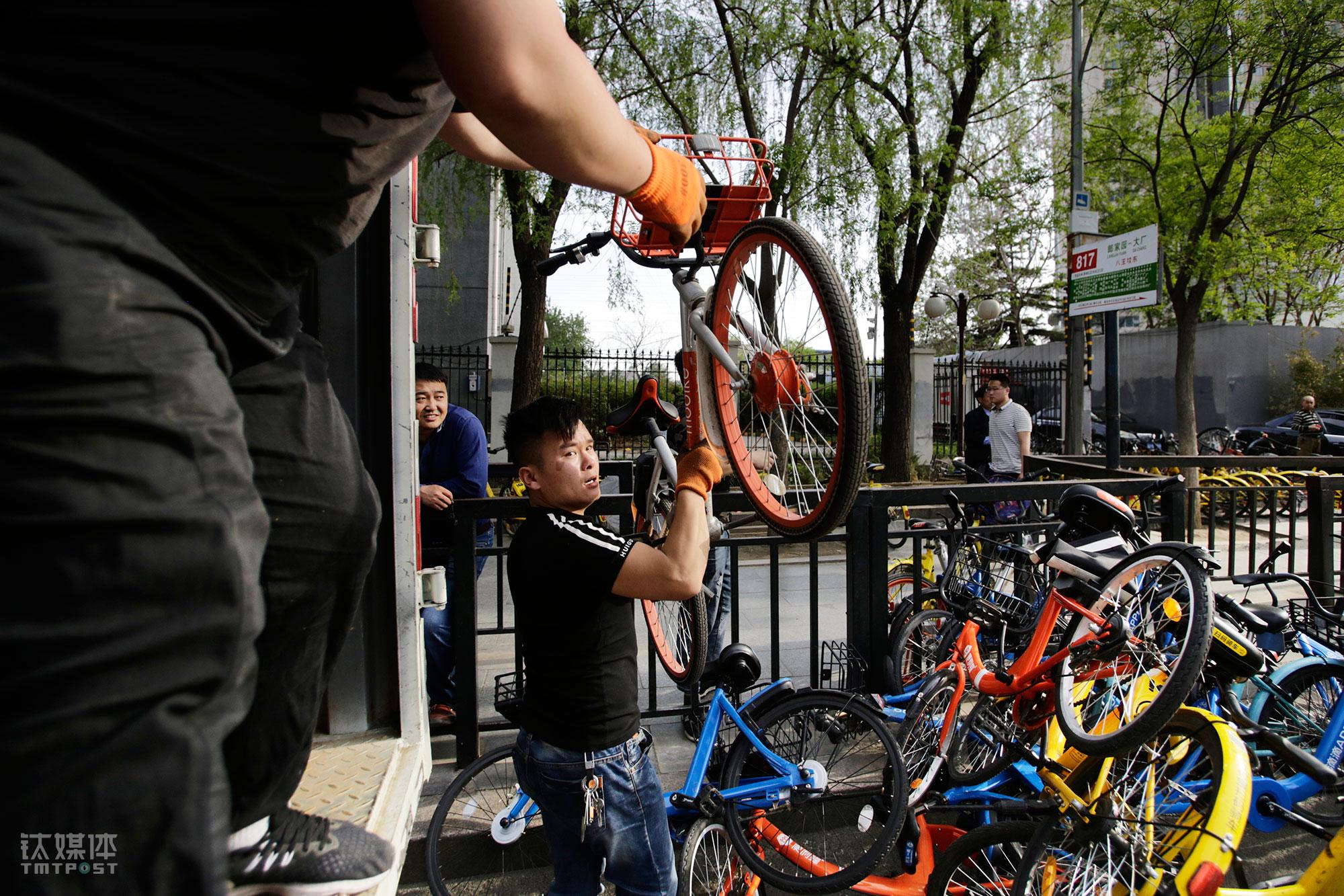 大强和工友在搬单车。大家每人负责一个车,但都会互相把对方的车装满了,再一起出发去运送目的地。