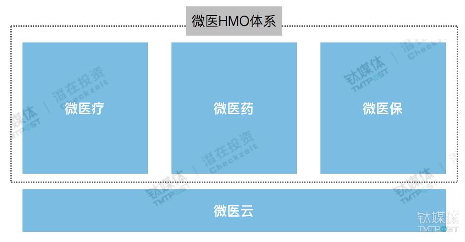 钛媒体根据微医业务体系制图,图/付梦雯