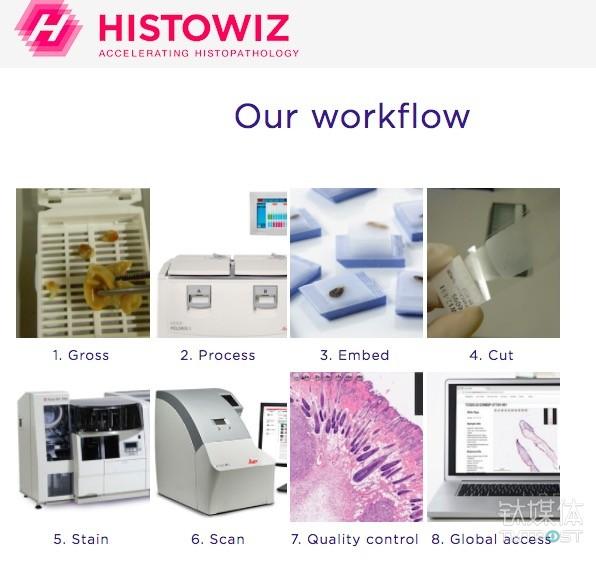 HistoWiz的工作流程