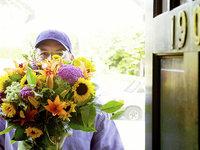 花加新一轮融资或大幅缩水,鲜花电商的未来究竟在何方?