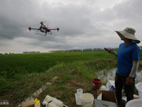 The new farmers with spraying drones in China's northeast farm land Beidahuang