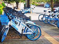 哈罗员工剪断几十辆青桔单车车锁,官方回应称多名涉事人员已离职