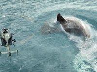 上映9天全球票房2.2亿美元,中美合拍片《巨齿鲨》做对了什么