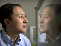 美联社独家采访贺建奎:如果引发了意外的副作用或伤害,我会像他们一样痛苦