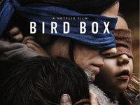 Netflix 和它的金丝鸟