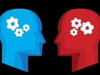 花时间培养一个会辩论的AI是一种什么体验?