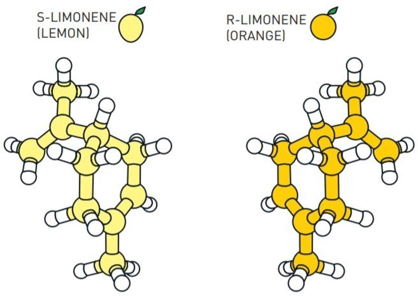 两种互为镜像的分子,左旋柠烯(S-Limonene)与右旋柠烯(R-Limonene)(瑞典皇家科学院)