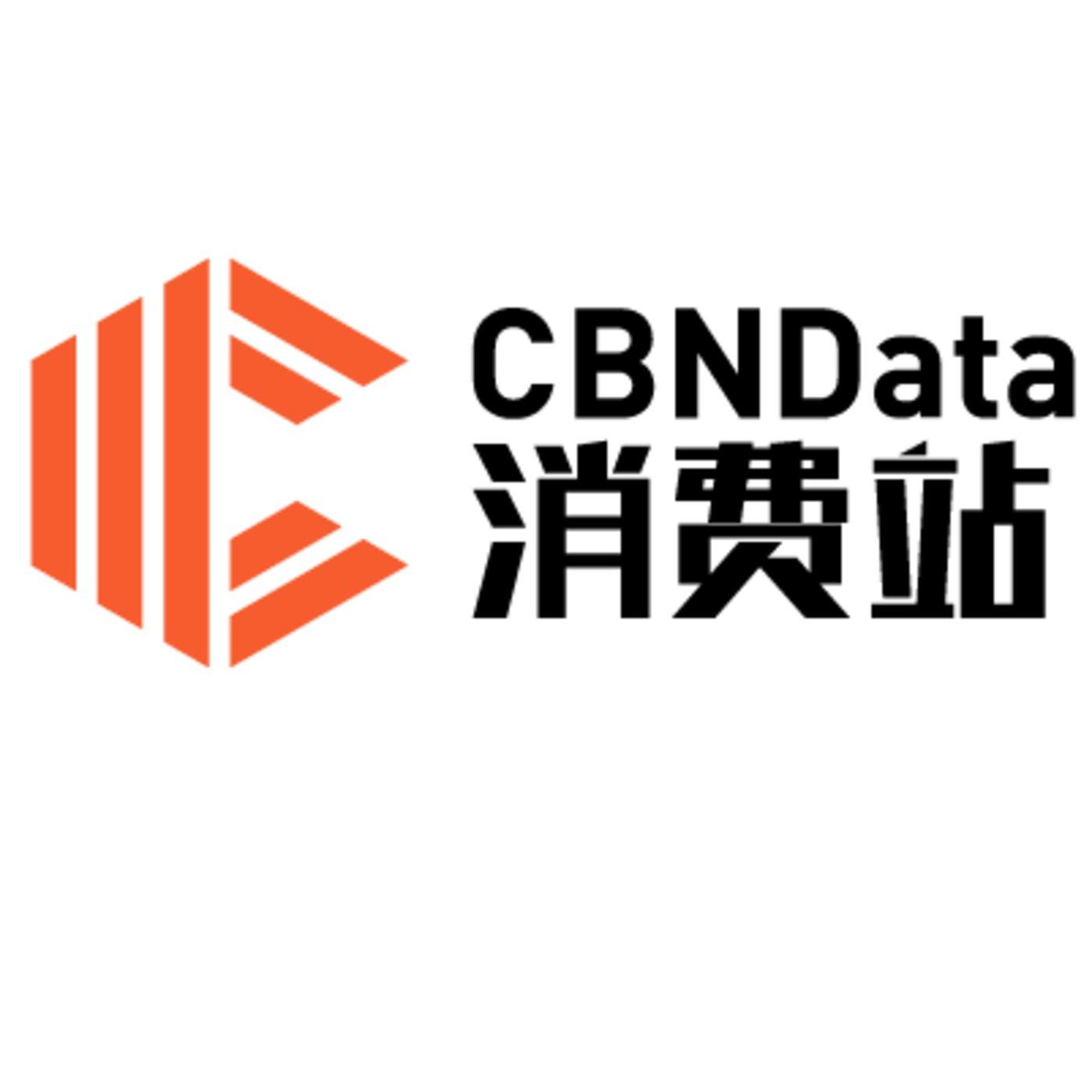 CBNData消费站