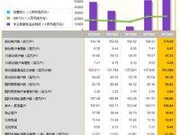 中国电信半年报简析:繁荣中有隐忧