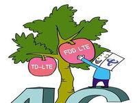 为何没有向联通和电信发放LTE-FDD牌照?