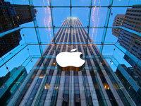 苹果女副总裁薪酬是CEO库克的8倍,为何?