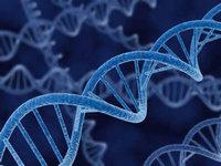 【大数据案例】神奇的基因检测术