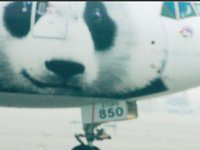 熊猫外交简史