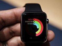 Apple Watch预售火爆,但仍面临着种种问题