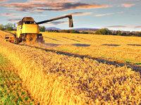 一个中介平台如何撬动农地流转的百万亿市场?