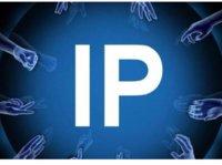 长尾,还是头部?读《爆款:如何打造超级IP》