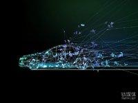 硅谷新能源车革命中的中国身影