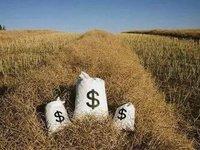 农村金融,一场九死一生的游戏