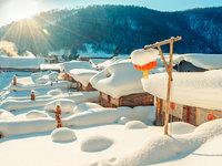 在南极守岁、在芬兰看极光,今年春节国人爱上了极地冰雪游